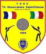 logo tose saint etienne vig